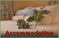 Accommodation Page